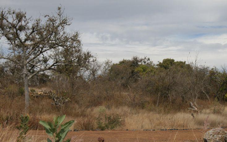 Foto de terreno habitacional en venta en, san antonio parangare, morelia, michoacán de ocampo, 1599492 no 11