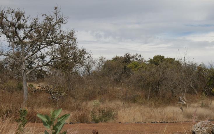 Foto de terreno habitacional en venta en  , san antonio parangare, morelia, michoacán de ocampo, 1599492 No. 11