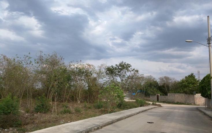 Foto de terreno habitacional en venta en  , san antonio xluch ii, m?rida, yucat?n, 1808404 No. 01