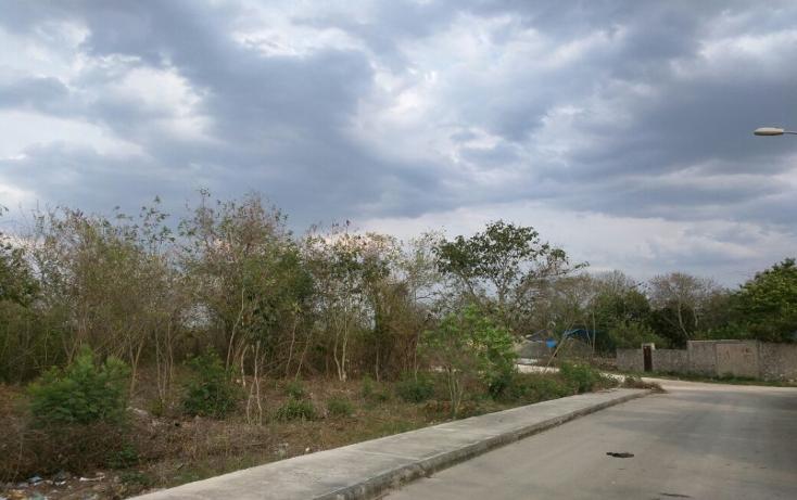 Foto de terreno habitacional en venta en  , san antonio xluch ii, m?rida, yucat?n, 1808404 No. 04