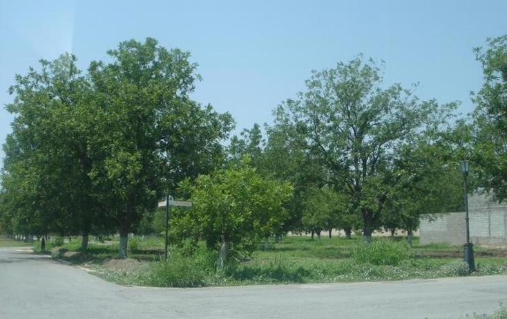 Foto de terreno habitacional en venta en  , san armando 2da etapa, torre?n, coahuila de zaragoza, 982067 No. 05