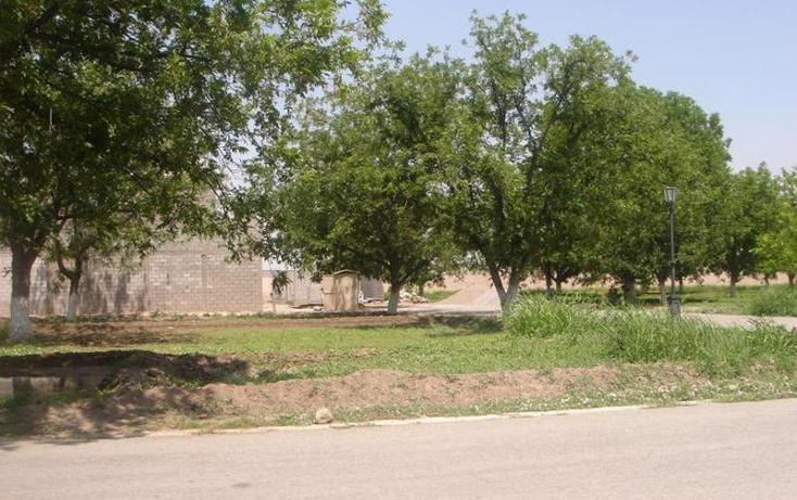 Foto de terreno habitacional en venta en  , san armando 2da etapa, torre?n, coahuila de zaragoza, 982067 No. 06