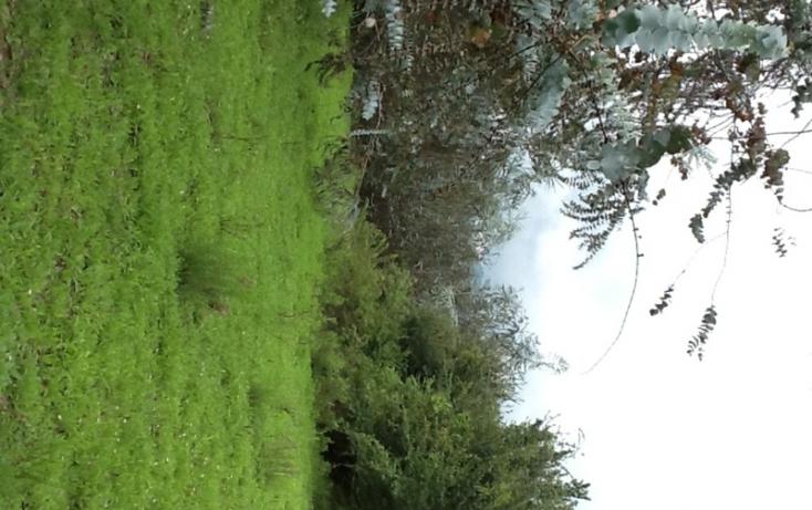 Foto de terreno habitacional en venta en, san bartolo, amanalco, estado de méxico, 829561 no 04