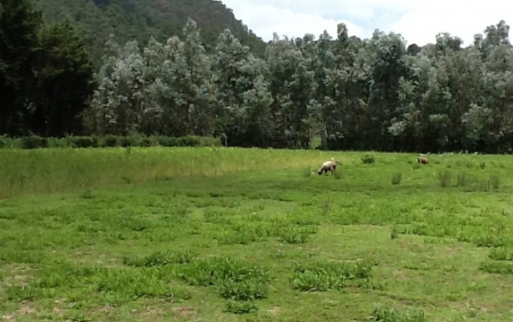 Foto de terreno habitacional en venta en, san bartolo, amanalco, estado de méxico, 829561 no 05
