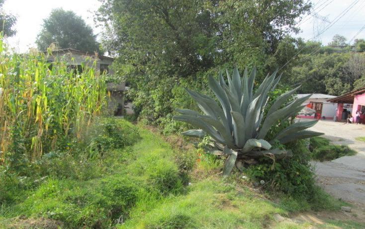 Foto de terreno habitacional en venta en  , san bartolo, amanalco, méxico, 1514252 No. 05