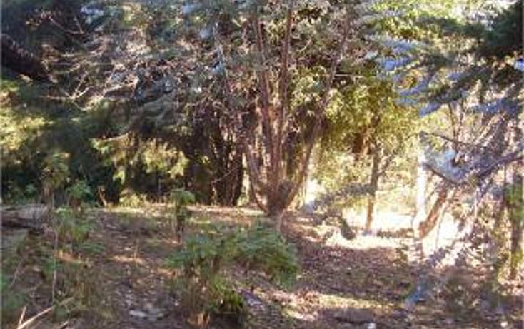 Foto de terreno habitacional en venta en  , san bartolo, amanalco, méxico, 1711064 No. 03