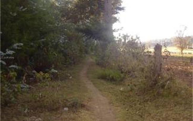 Foto de terreno habitacional en venta en  , san bartolo, amanalco, méxico, 1711064 No. 04