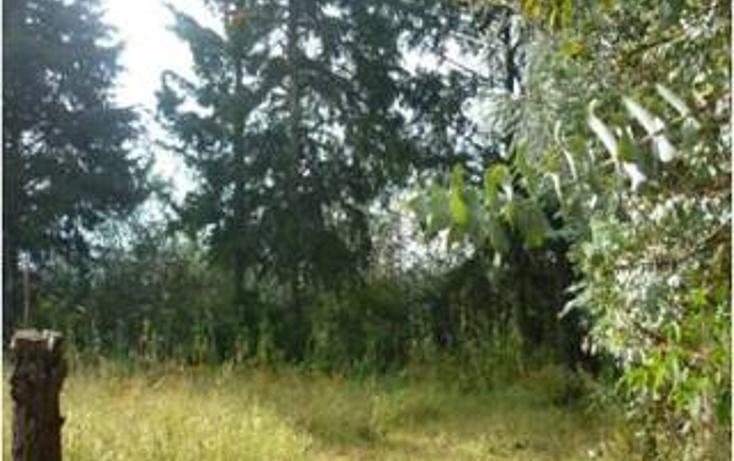 Foto de terreno habitacional en venta en  , san bartolo, amanalco, méxico, 1711066 No. 04