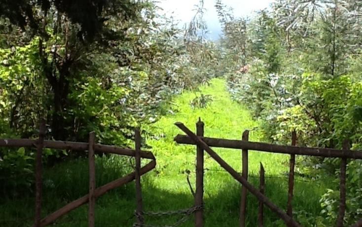 Foto de terreno habitacional en venta en  , san bartolo, amanalco, méxico, 829557 No. 02