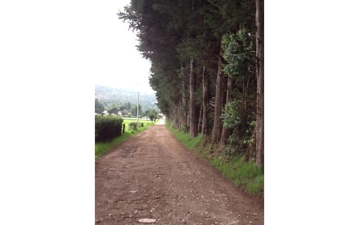Foto de terreno habitacional en venta en  , san bartolo, amanalco, méxico, 829557 No. 04