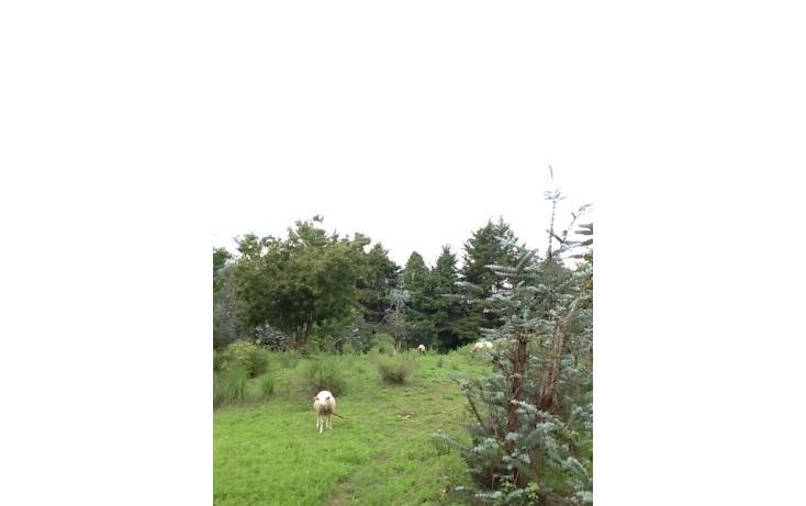 Foto de terreno habitacional en venta en  , san bartolo, amanalco, méxico, 829557 No. 06