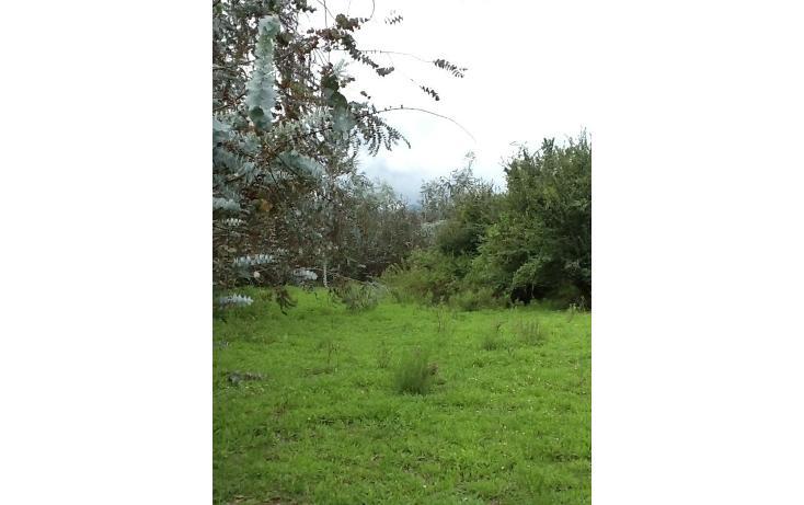 Foto de terreno habitacional en venta en  , san bartolo, amanalco, méxico, 829561 No. 02