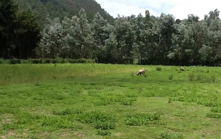 Foto de terreno habitacional en venta en  , san bartolo, amanalco, méxico, 829561 No. 03