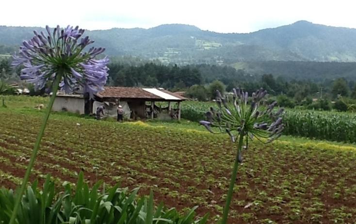 Foto de terreno habitacional en venta en  , san bartolo, amanalco, méxico, 829563 No. 05