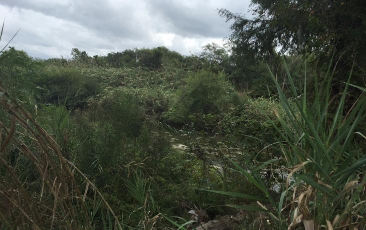 Foto de terreno comercial en venta en  , san bartolo, cadereyta jiménez, nuevo león, 1484451 No. 02