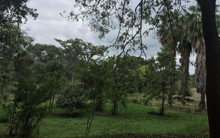 Foto de terreno comercial en venta en  , san bartolo, cadereyta jiménez, nuevo león, 1484451 No. 03
