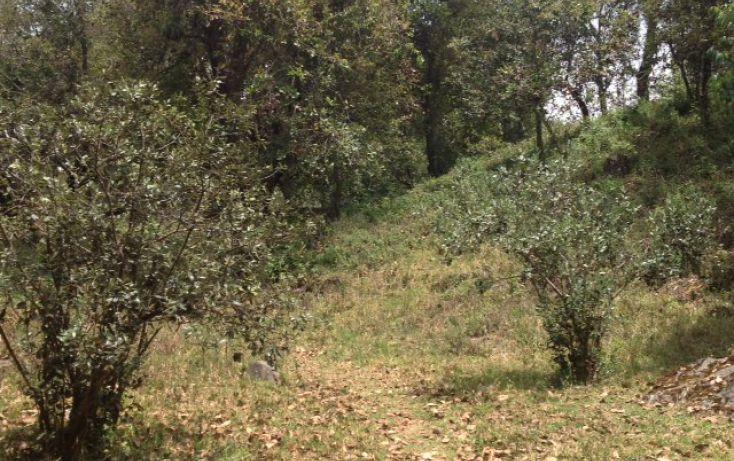 Foto de terreno habitacional en venta en san bartolo sn, amanalco de becerra, amanalco, estado de méxico, 1825093 no 04