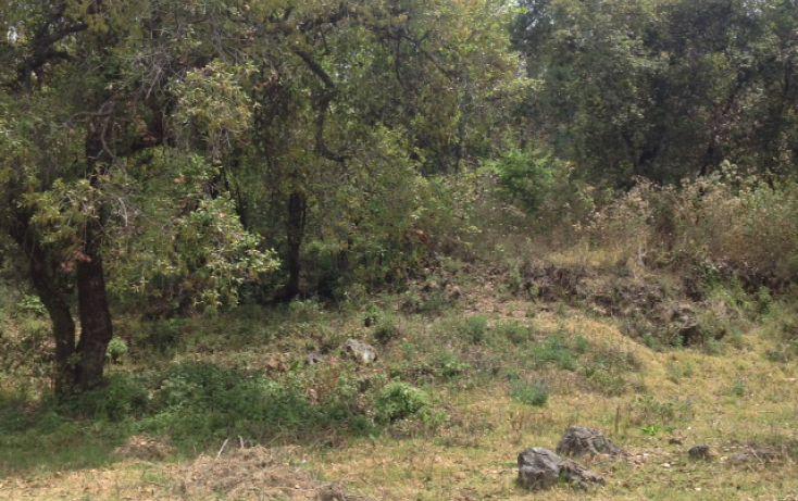 Foto de terreno habitacional en venta en san bartolo sn, amanalco de becerra, amanalco, estado de méxico, 1825093 no 06