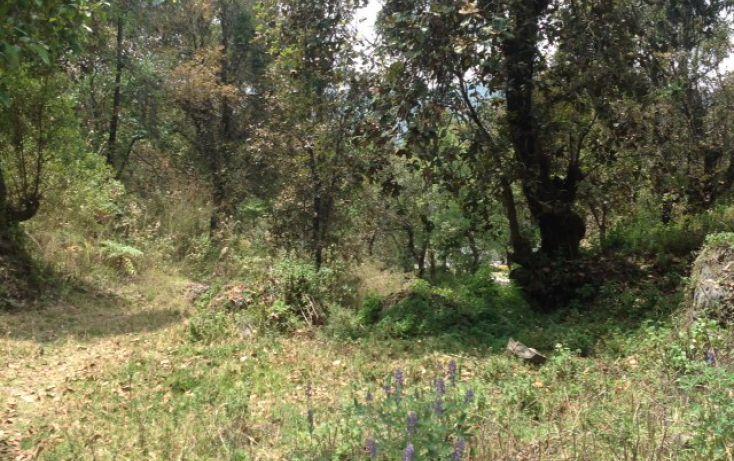 Foto de terreno habitacional en venta en san bartolo sn, amanalco de becerra, amanalco, estado de méxico, 1825093 no 07
