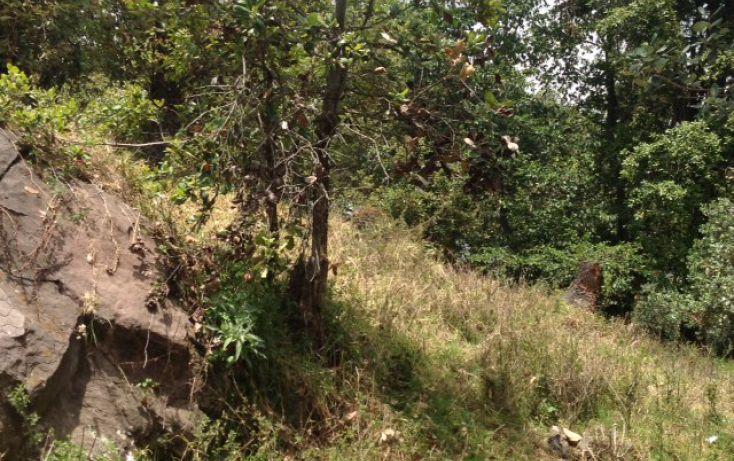 Foto de terreno habitacional en venta en san bartolo sn, amanalco de becerra, amanalco, estado de méxico, 1825093 no 08