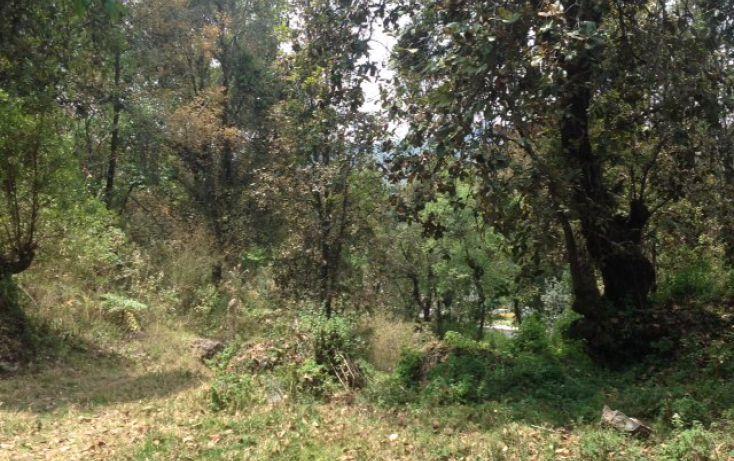 Foto de terreno habitacional en venta en san bartolo sn, amanalco de becerra, amanalco, estado de méxico, 1825093 no 10