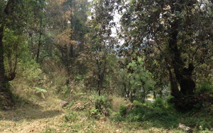 Foto de terreno habitacional en venta en san bartolo sn, amanalco de becerra, amanalco, estado de méxico, 1825093 no 11