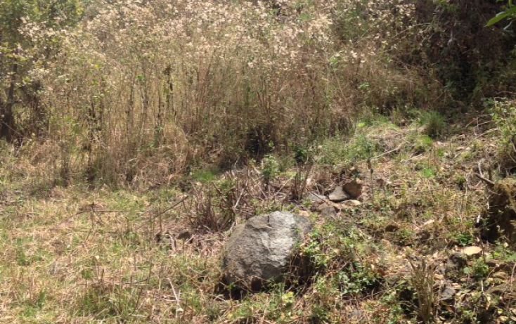 Foto de terreno habitacional en venta en san bartolo sn, amanalco de becerra, amanalco, estado de méxico, 1825093 no 12
