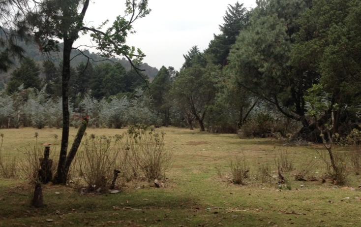 Foto de terreno habitacional en venta en  , amanalco de becerra, amanalco, méxico, 1825107 No. 07