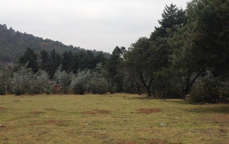Foto de terreno habitacional en venta en  , amanalco de becerra, amanalco, méxico, 1825107 No. 08