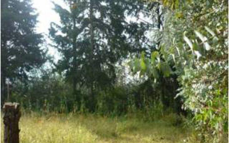 Foto de terreno habitacional en venta en san bartolo sn, san bartolo, amanalco, estado de méxico, 1711066 no 04
