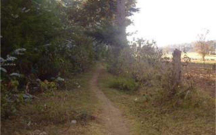 Foto de terreno habitacional en venta en san bartolo sn sn, san bartolo, amanalco, estado de méxico, 1711064 no 04