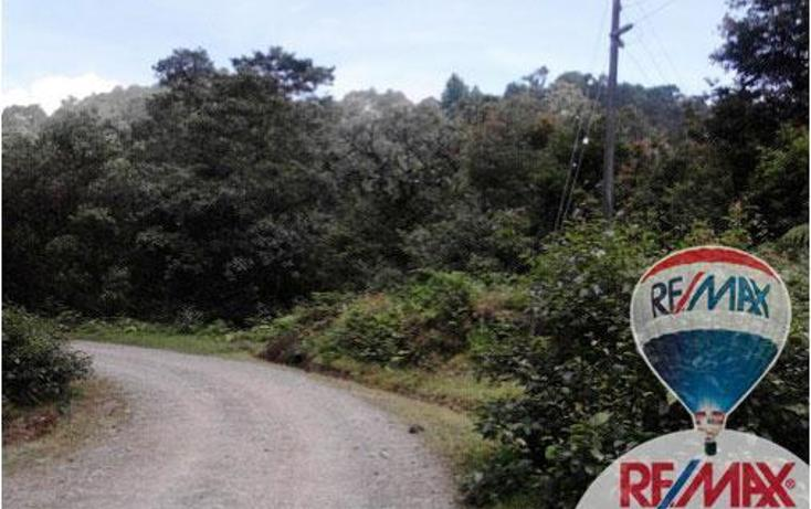 Foto de terreno habitacional en venta en  , san bartolo tutotepec, san bartolo tutotepec, hidalgo, 2012499 No. 02