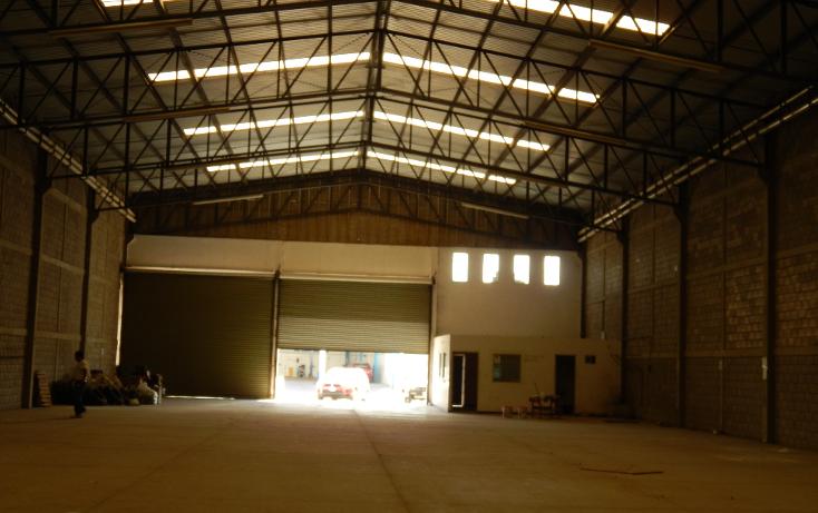 Foto de nave industrial en renta en  , san benito, culiacán, sinaloa, 1067113 No. 21
