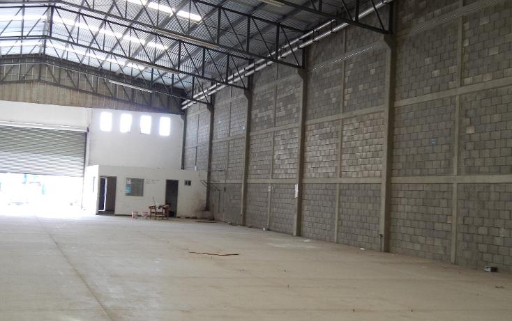 Foto de nave industrial en renta en  , san benito, culiacán, sinaloa, 1067113 No. 23