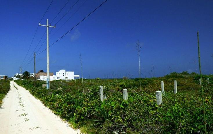 Foto de terreno habitacional en venta en  , san benito, ixil, yucatán, 2643876 No. 08
