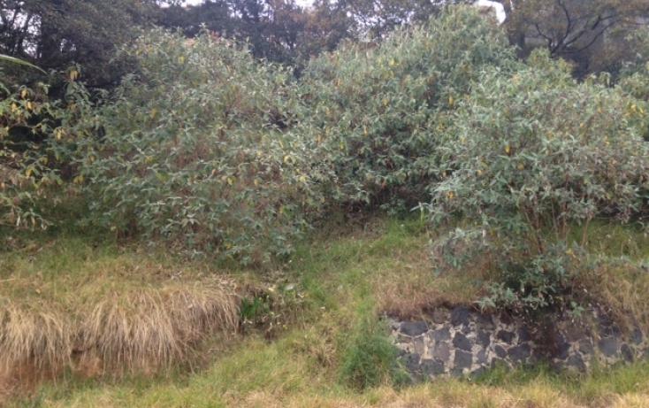 Foto de terreno habitacional en venta en, san bernabé ocotepec, la magdalena contreras, df, 949297 no 06