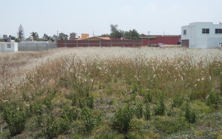 Foto de terreno habitacional en venta en  , san bernardino tlaxcalancingo, san andrés cholula, puebla, 2003068 No. 05
