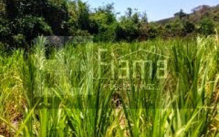Foto de terreno habitacional en venta en, san blas centro, san blas, nayarit, 1049055 no 04
