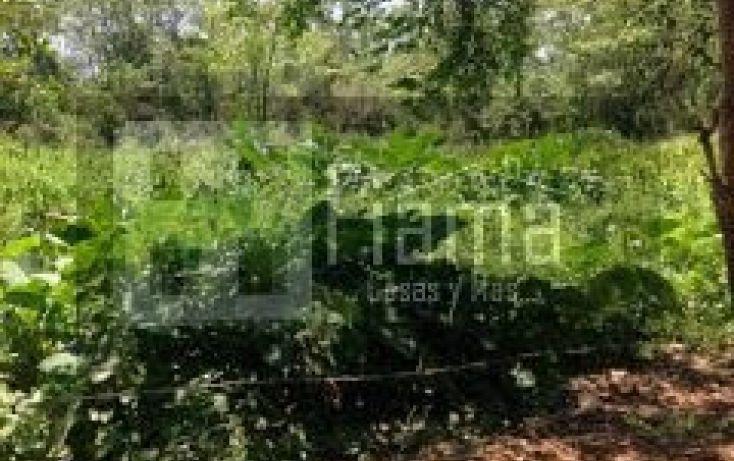 Foto de terreno habitacional en venta en, san blas centro, san blas, nayarit, 1049055 no 13