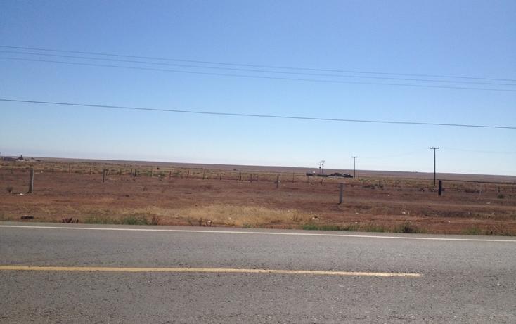 Foto de terreno comercial en venta en  , san borja residencial, ensenada, baja california, 934969 No. 02