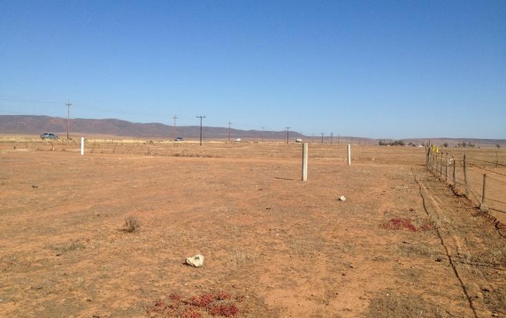 Foto de terreno comercial en venta en  , san borja residencial, ensenada, baja california, 934969 No. 05