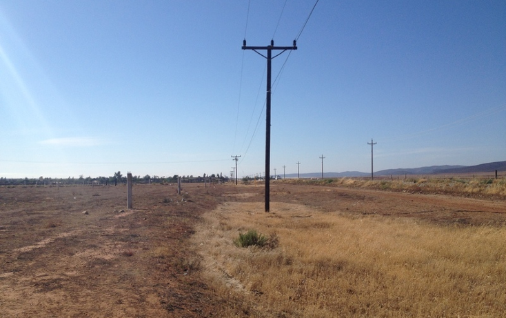 Foto de terreno comercial en venta en  , san borja residencial, ensenada, baja california, 934969 No. 12