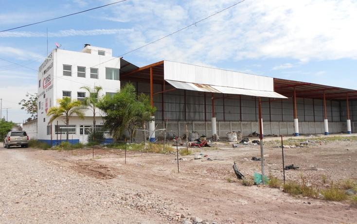 Foto de nave industrial en venta en  , san carlos, cortazar, guanajuato, 1440625 No. 03