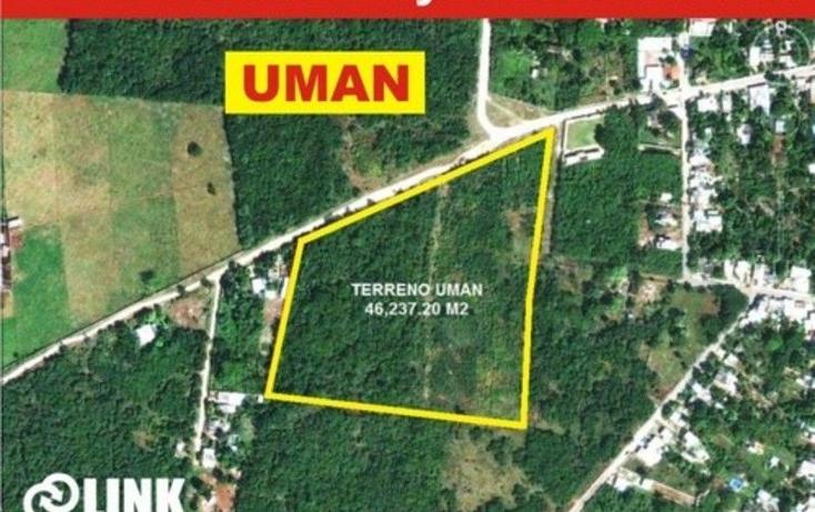 Foto de terreno habitacional en venta en  , san carlos umán, umán, yucatán, 1701494 No. 01