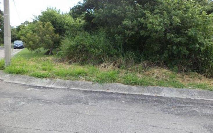 Foto de terreno habitacional en venta en  , san carlos, yautepec, morelos, 2008656 No. 03