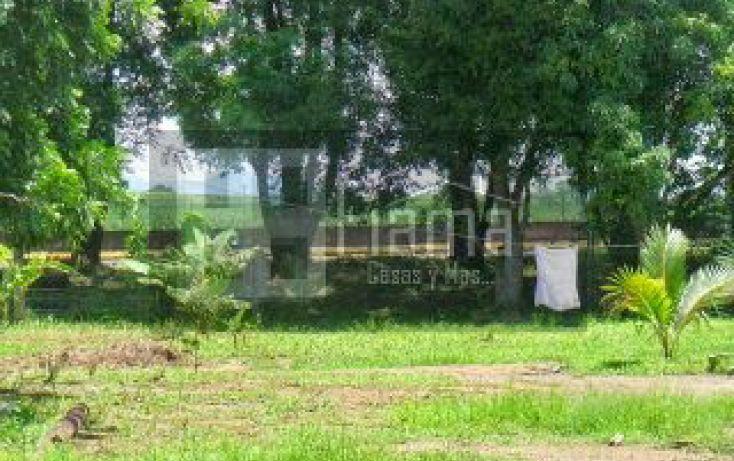Foto de terreno habitacional en venta en, san cayetano, tepic, nayarit, 1361077 no 09