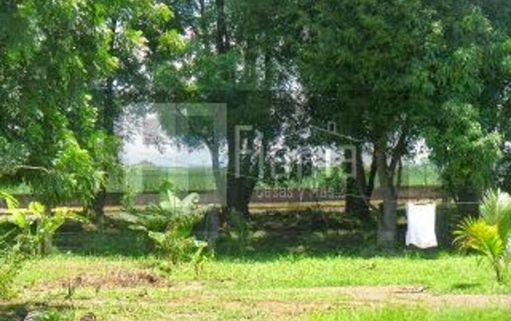 Foto de terreno habitacional en venta en  , san cayetano, tepic, nayarit, 1361077 No. 10