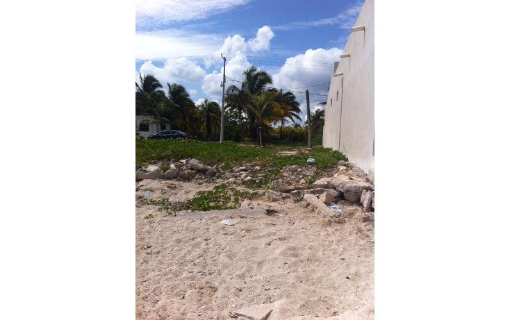 Foto de terreno habitacional en venta en  , san crisanto, sinanché, yucatán, 1137871 No. 02