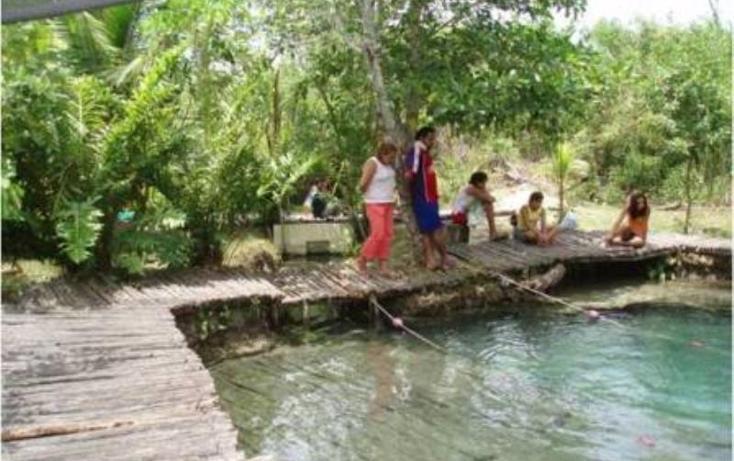 Foto de terreno habitacional en venta en  , san crisanto, sinanché, yucatán, 2706787 No. 04