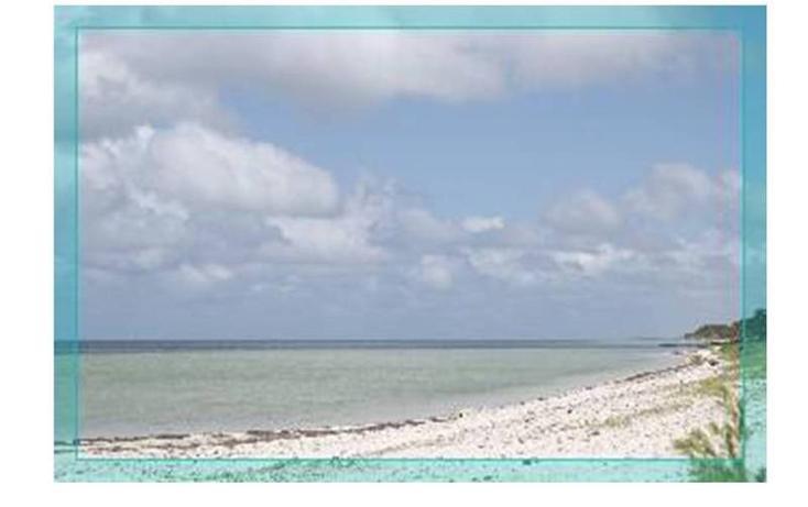 Foto de rancho en venta en  , san crisanto, sinanché, yucatán, 478252 No. 07